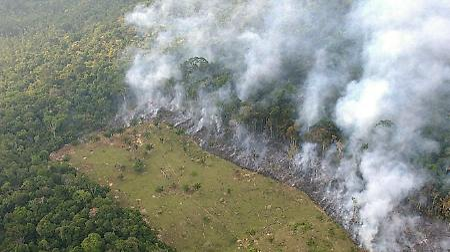 Brandrodung im Amazonas Regenwald.